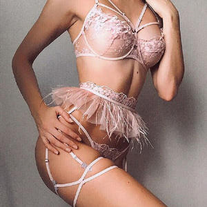 New hot style complex craft lace feather lace embroidery underwear cross three-piece lace lingerie garter set